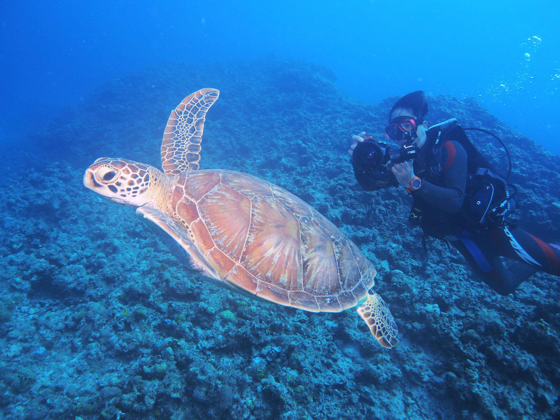 沖縄店体験ダイビング